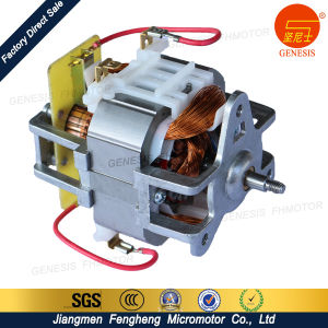 Jiangmen Fengheng AC Motor for Home Kitchen Appliance pictures & photos