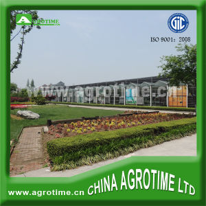 Fiberglass Sheet for Greenhouse for Sale (CMY1045)