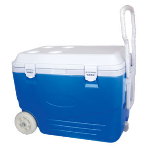 Cooler Box (CCC00012) Capacity: 45L pictures & photos