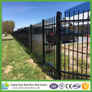 Black Powder Coated Ornamental Steel Fence for Commercial pictures & photos