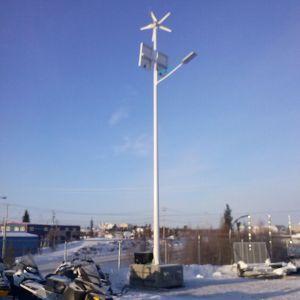 Pegasus Series Wind Solar Hybrid Street Light System Two 30W LED Street Lights