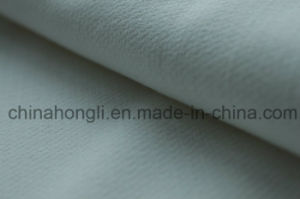 Double-Layer, Polyester Rayon Spandex Fabric, 385GSM pictures & photos