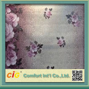 Paper Wall Covering pictures & photos
