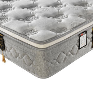 Home and Hotel Used Soft Bed Mattress (FB738) pictures & photos