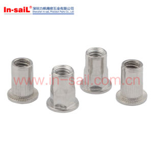 Reduce Head Knurled Body M6 Rivet pictures & photos