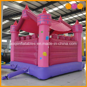 Commercial Inflatable Castle Bouncer with Certificate for Sale (AQ516) pictures & photos