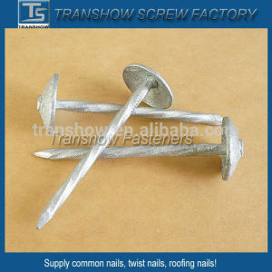 Hot Dipper Galvanized Mushroom Head Roofing Nails pictures & photos