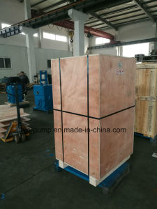 Electrical Industrial Vacuum Freeze-Drying Dry Screw Pump pictures & photos