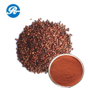 Beauty &Skin Care Grape Seed Extract pictures & photos