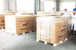 Tier 1 World Famous Brand Wholesale Price Jinko Solar 255W pictures & photos