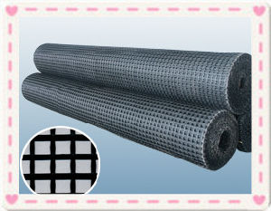 Fiberglass Geogrid Prices for Road and Bridge Pavement Reinforced pictures & photos