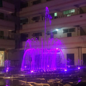 Hot Sale Outdoor Stainless Steel Dancing Musical Fountain pictures & photos