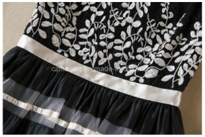 Embroidered Restonic Women`S Skirt pictures & photos