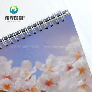 Unique Design Printing Calendar Can Be Customized for Advertisement pictures & photos