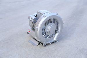 The Ce Approved Vacuum Pump of China pictures & photos