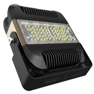 Ies Available High Quality Driverless LED Flood Light 120lm/W With CE pictures & photos