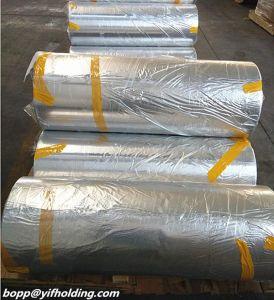 Metallized Polypropylene Film Manufacturers pictures & photos