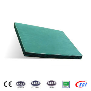 Portable 6cm Gymnastic Mat Landing Mat for Competition pictures & photos