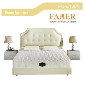 Farer Latest Design of 3e Coconut Fiber Bonnell Spring Mattress for Hotel pictures & photos