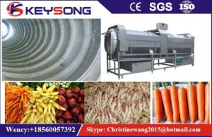Industrial Vegetable Fruit Washing Machine pictures & photos