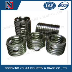 Stainless Steel Thread Insert with Three Holes pictures & photos