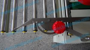 Case Sealer (CS-100A) pictures & photos
