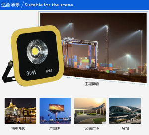 High Quality COB 30W White Color LED Plaza Light/Lawn Light/Square Light/Warehouse Light/Hotel Light/Park Light/Garden Light LED Flood Light pictures & photos