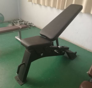 Ce Approved Nautilus Exercise Equipment / Adj. Utility Bench (SN24) pictures & photos