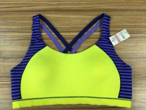 1001d-1, Underwear, Women&Lady′s Bra, Sporting, Wear Good, Fashion, Green pictures & photos