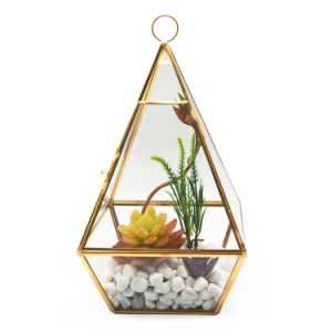 Beautiful Geometric Glass Terrarium for Flower pictures & photos
