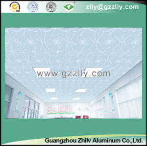 Metal Texture Fortune Comes Frosted Ceiling with Blooming Flowers pictures & photos