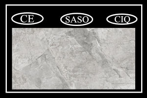 Nobel Design Full Body Bathroom Porcelain Floor Ceramic Tiles (PD1620603P) pictures & photos