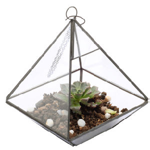 Round Shape Glass Terrarium for Home Decoration pictures & photos