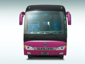 Smart and Magnificent Design Luxury Passenger Bus Slk6118A pictures & photos