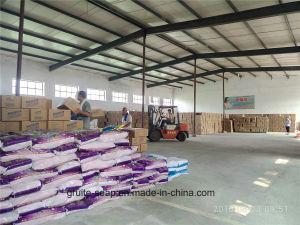 Laundry Detergent Powder for Caribbean Region pictures & photos