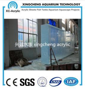 Thick Acrylic Panel Aquarium Project pictures & photos