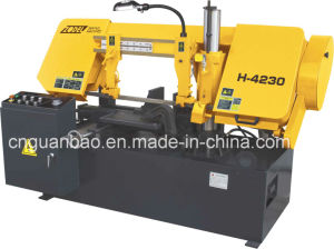 Economic Metal Cutting Machine H-4230 pictures & photos