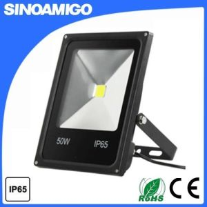 10W 20W 30W 50W 70W 100W COB LED Floodlight with Ce RoHS pictures & photos