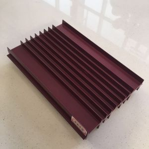 Factory Sale 6000s Extrusion Aluminium Heat Sink pictures & photos
