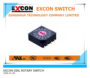 Special Rotary Switch with High Rating pictures & photos