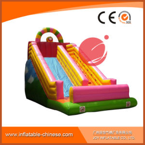 Giant Inflatable Dry Slide for Amusement Park (T4-701) pictures & photos