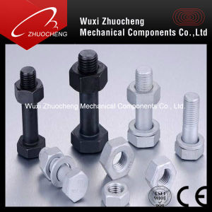 Hex Head Bolt with Hex Nut Black pictures & photos