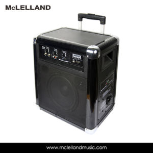 Bluetooth Portable PA System Speaker (Hybrid Driver) pictures & photos