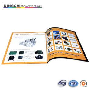 Printing Brochures, Folders (NC-080)