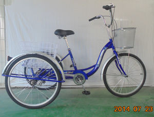 Economic Rear 6speed Cargo Tricycle (FP-TRCY043) pictures & photos