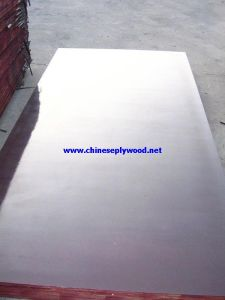 Brown Film Marine Plywood with High Quality (HT-FFP-026)