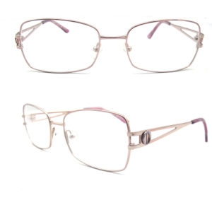 Nice Looking Eyeglasses (LM-9182)