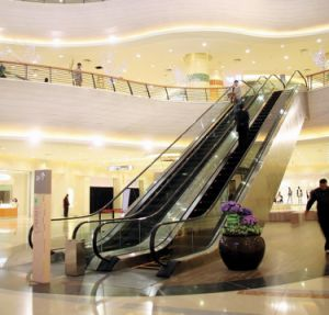 High Quality Escalator with Stainless Steel Cladding pictures & photos