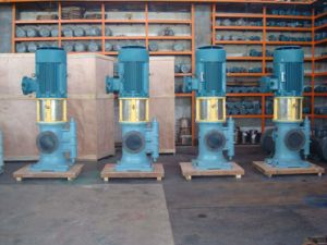 3GCLS Double Suction Vertical Screw Pump pictures & photos