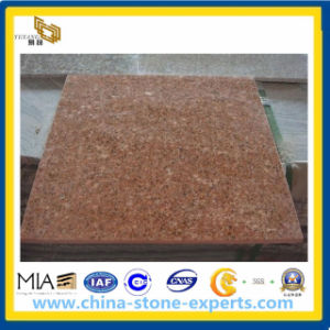 G683 Granite Tiles/Slabs/China Red Granite Wall Covering/Guangze Red Granite (YQA-GT1030) pictures & photos